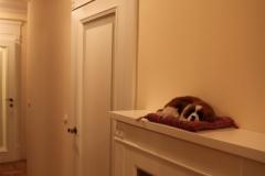 drzwi-wewnetrzne-przeszklone-2